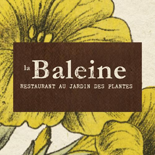 baleine_home_500